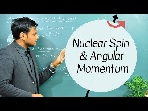 Structure of the Nucleons - Assignment Point