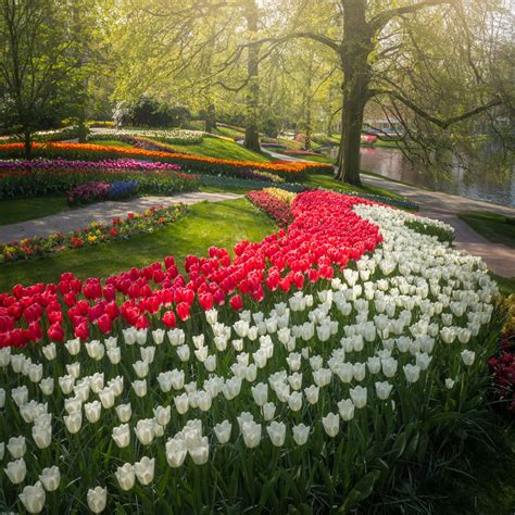 The Most Beautiful Flower Garden In The World Has No